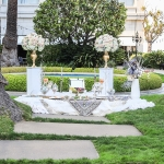 fairmont-sf-wedding-dreamflowerscom-8539