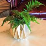 green-fern-wedding-28