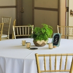 green-fern-wedding-3