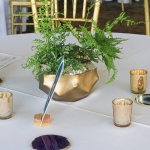 green-fern-wedding-5