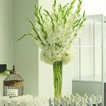 white-green-wedding (26 of 29)